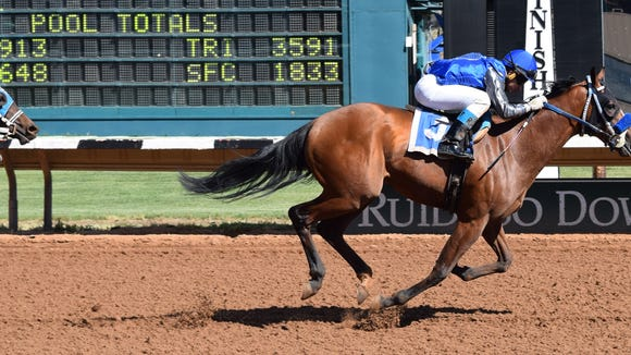 Blazing Navarone was impressive in the Mountain Top Thoroughbred trials on Friday at Ruidoso Downs Racetrack and Casino.