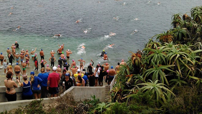 It was a spectacular sight as about 50 swimmers plunged into La Jolla Cove north of San Diego for a 10-mile race on Sept. 26.