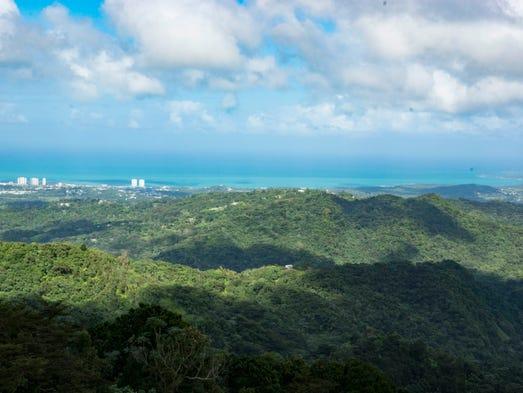 Puerto Rico Rainforest Self Tour