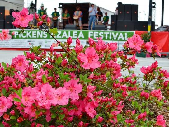 The Annual Pickens Azalea Festival Saturday, April