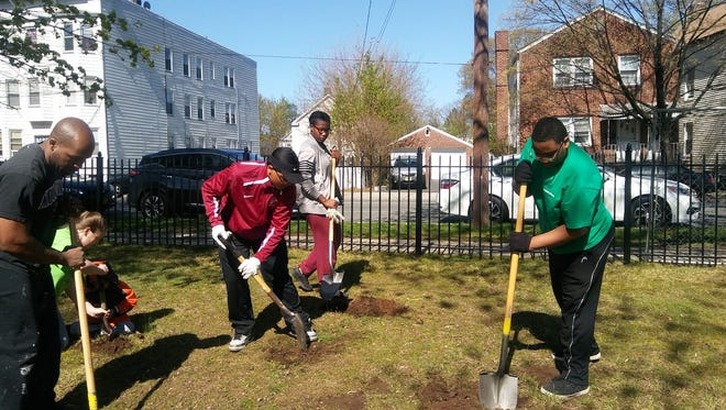 Volunteers at a tree planting in Watsessing Park in Bloomfield last May. Volunteers return to the park on Sunday, Nov. 5, 2017, for a beautification project.