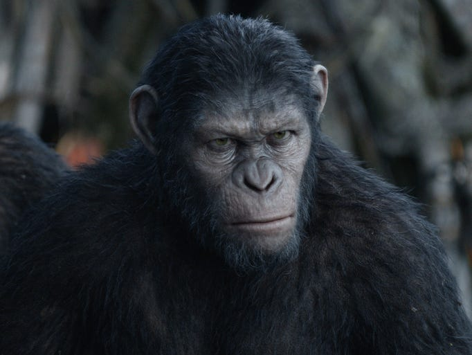Caesar (played by Andy Serkis): The highly evolved alpha ape returns from 2011's 'Rise of the Planet of the Apes' older and burlier. Director Matt Reeves says the Weta Digital artists made Caesar slightly more apelike in this film to fit into the concept of a pure ape civilization.