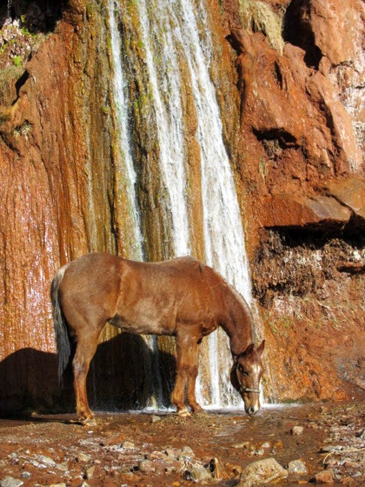 La-Luz-Falls with horse by Matt