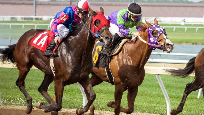 21st running of the Grade II $500,000-added Indiana Derby