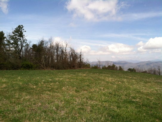 SAHC purchased 155 acres at Strawberry Gap, protecting