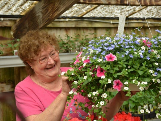 Carol Cravillion works with one of the hanging baskets that are among the springtime features at Casco Floral Shop.