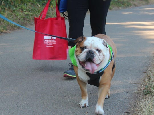 Join friendly, tail-wagging dogs and their people for a morning stroll by the river, with fun activities to raise funds that support Willamette Valley Hospice patients.