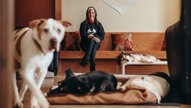 """Kim Skarritt of Silver Muzzle Cottage sits with her dogs in the rescue's living room on Nov. 14, 2016. """"They act forever grateful,"""" she said of the dogs she's taken in. """"It's hard to see an emotion like gratefulness in a dog, but you do see that. You see a grateful dog and it's obvious."""""""