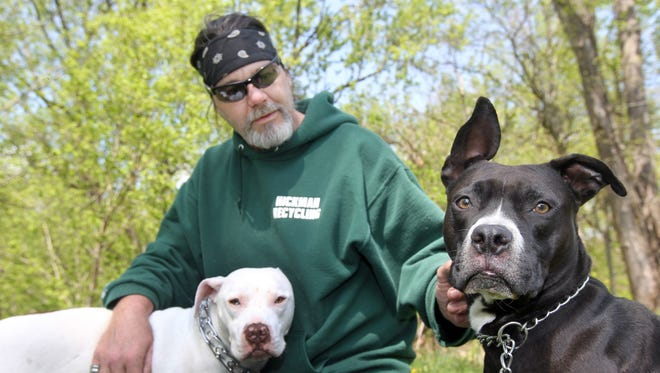 Robert Ward, of Dayton, with his dogs Diamond (right), a boxer mix, and Molly, a pit bull mix. The city's new mayor has begun enforcing Dayton's ban on pit bulls.