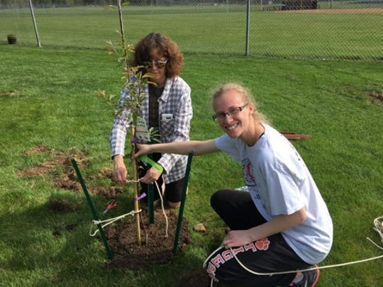 Mrs. Wilcoz and Sydney tie a tree at The Giving Garden.
