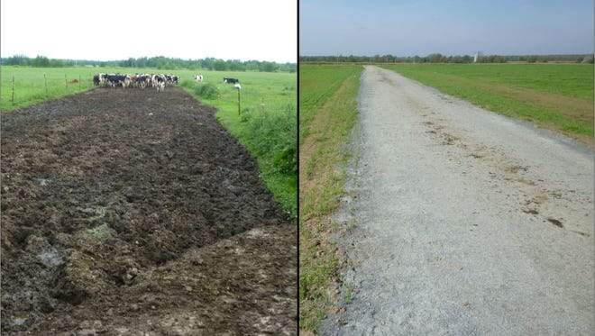 The Bolstad lane for cattle traffic before technical assistance. The lane after design and construction.