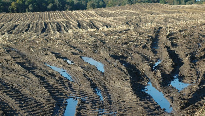 Farmers working the harvest had to deal with wet soils and ruts in many areas of Wisconsin last week.