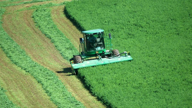 Wisconsin farmers work fast to make hay during a season marked by multiple interruptions from rain.