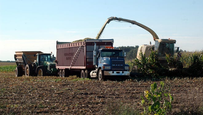 Farmers are eager to being chopping corn silage, however, cold, wet weather has slowed the crops' maturity.