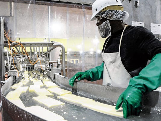 Robin Zielinski - Sun-News   Jerome Gray, F&A Dairy machine operator, works in the cheese factory on Tuesday as bricks of mozzarella float by.
