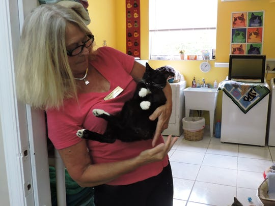 Volunteer Diane Conaway with Oreo at the Baby Shower for Kittens on April 22 at the sanctuary.
