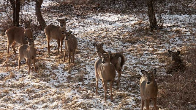 The Winnebago County Deer Advisory Council met for the first time Wednesday night.