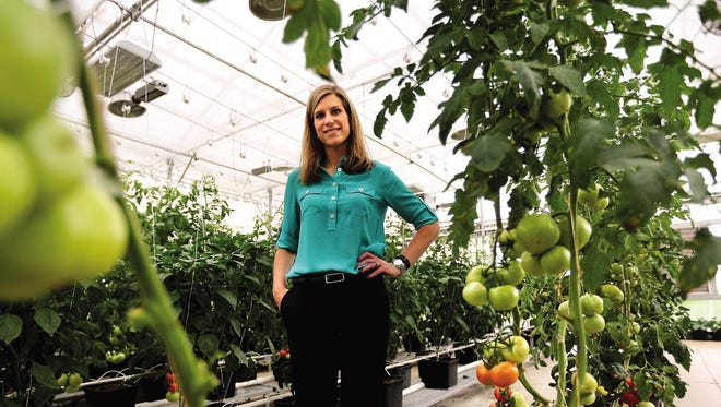 Martina Bockenstedt, general manager of Engineering Services and Products Company, has seen a large boost in sales of Growers Supply greenhouses to marijuana growers, as more states have legalized medical marijuana.