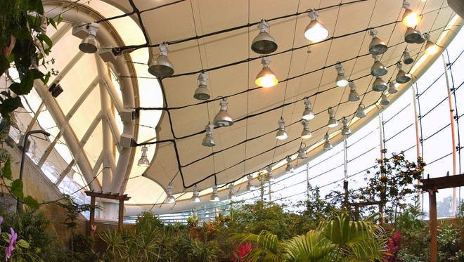 The Dancing Wings Butterfly Garden is part of the Strong National Museum of Play.