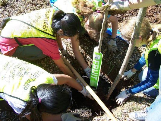 636253636861796297-GreenWorks-tree-planting3.jpg