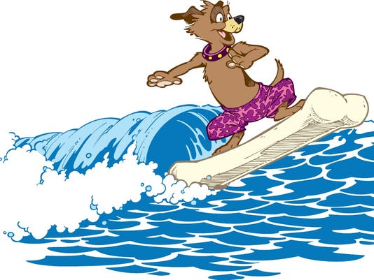 636627607460997427-dog-surf.jpg
