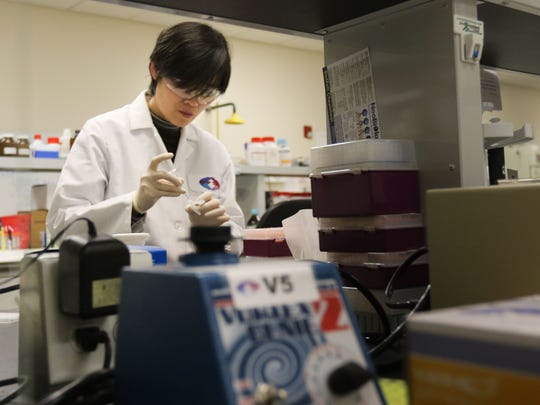 Delaware's jobless rate fell to 4.8 percent in February. At ANP Technologies in Newark, the biotech firm's payroll has grown to more than 30 employees. Here, Zhiying Zou works in ANP's Newark labs in February.
