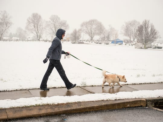 Sandy Gross of York Township walks her 9-year-old dog,