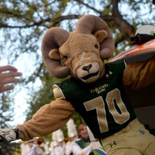 Cam the Ram mascot high-fives spectators along The Oval on Colorado State University's campus on Friday, Oct. 11, 2013, during the school's 99th annual homecoming in Fort Collins.
