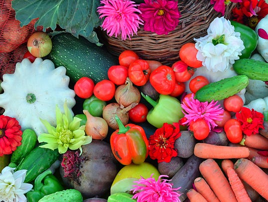 Many different vegetables