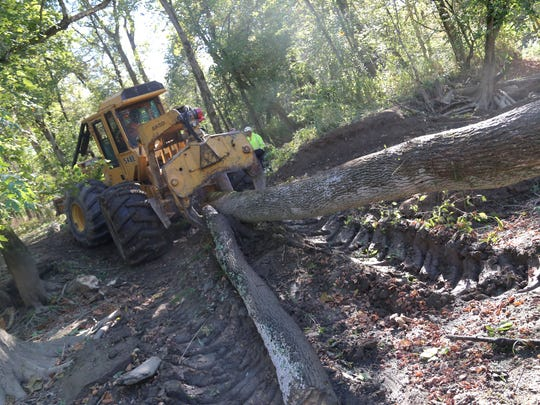 Workers from Tawa Tree Services drag timber that is blocking the flow of the Black Fork River on the Dave Grauer farm near Shiloh.