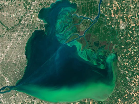 Satellite image of algal blooms around the Great Lakes,