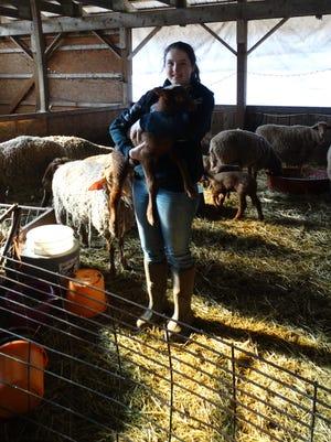 Red Hook basketball player Kalie Harrison tending to sheep on her family's Tivoli farm on Jan. 16.