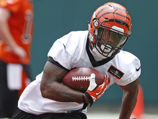Cincinnati Bengals Jeremy Hill, 32, runs the ball during mini-camp held at Paul Brown Stadium Tuesday.