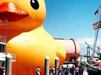 Is World's Largest Yellow Rubber Duck coming to Bay City?