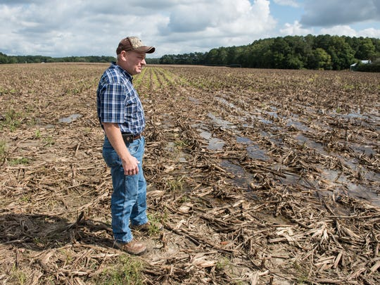 Sam Parker observes ponding at his Zion Road farm on Tuesday, Oct. 4, 2016.  If the standing water does not dissipate, planting new crops may be hindered.