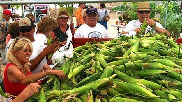 Celebrate the sweet-corn season at Mortimer Family Farms near Dewey next weekend.
