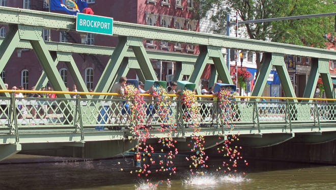 About 3,000 plastic ducks take a dive into the canal at the 17th annual Duck Derby held during the Brockport Arts Festival in 2014.
