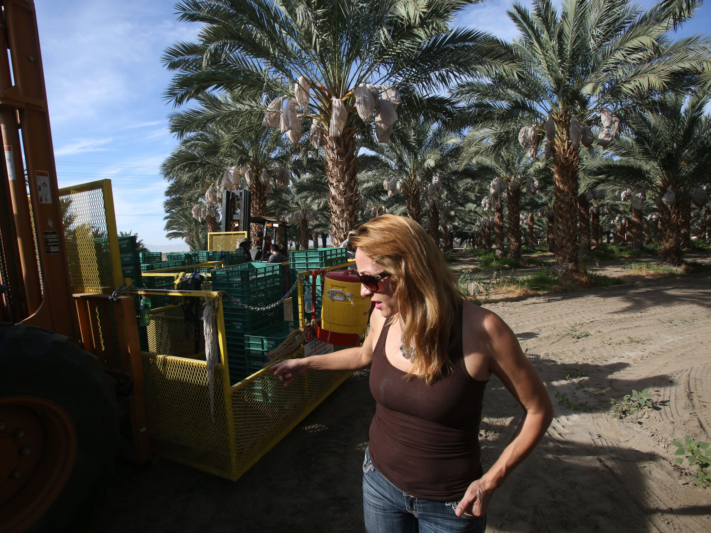 Community worker Lorena Martinez tells a foreman in September that cups are missing near a water station in a Date Palm grove near Mecca, California.
