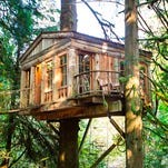 Tired of hotels? Climb into a treehouse