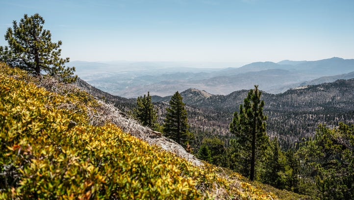 A view from Wellman Cienega Trail in the San Jacinto