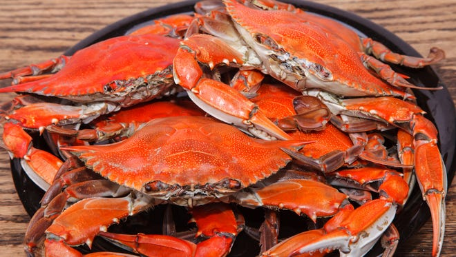 Crabs, scallops and more will be served during The Dutchman's Brauhuas's Seafood Festival by the Bay on Sunday.