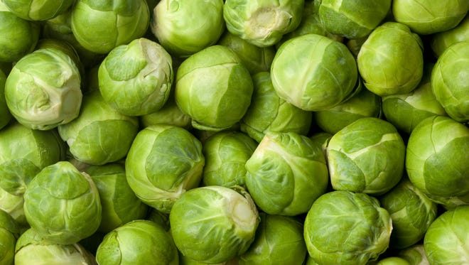 Brussels sprouts are considered a cool weather crop, and frost does not harm them.
