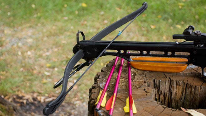 A photo of a crossbow and arrows on the stump.