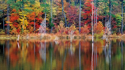 """Former Star photographer Gary Moore captured images of Southern Indiana for his book """"Brown County Mornings."""""""