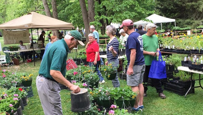Members of the Men's Garden Club of Asheville volunteer at the Botanical Gardens of Asheville.