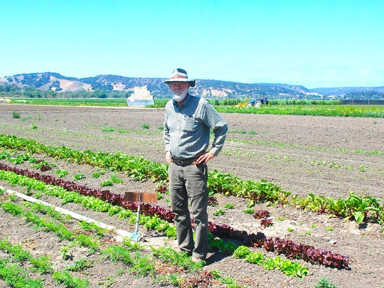 "Chris Bunn, president of Crown Packing Co. Inc., known by its ""Bunny"" brand, stands in a field of organic crops at The Farm, just West of Salinas off Highway 68."