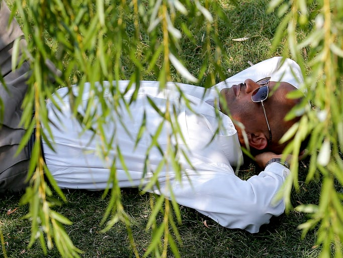 Martez McGee, of Indianapolis, relaxes under the shade of a weeping willow tree in the Celebration Plaza Amphitheater at White River State Park on Tuesday, July 22, 2014, in Indianapolis.
