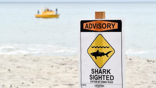 An advisory like this was posted in Ventura after a shark, most likely a juvenile, was seen swimming near the pier on Sunday.