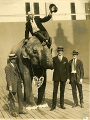 Provided/Cincinnati Museum Center Tillie the elephant was the most famous of many exotic animals from John Robinson?s Circus that spent their winters in Terrace Park. Tillie the elephant was the most famous of many exotic animals from John Robinson's Circus that spent their winters in Terrace Park.