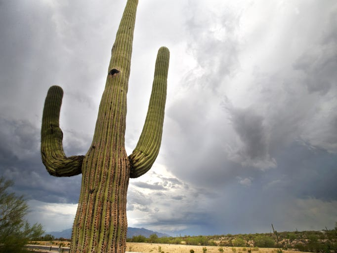 Phoenix weather can get extreme. These are the hottest,